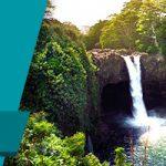 Aloha House Review