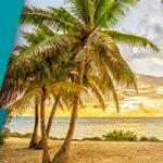Seaside Palm Beach Review