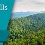 Wilbur D. Mills Treatment Center Review