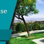 Phoenix House Los Angels Review