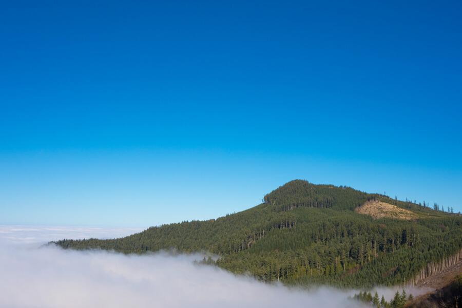 Coburg Hills of Oregon, USA