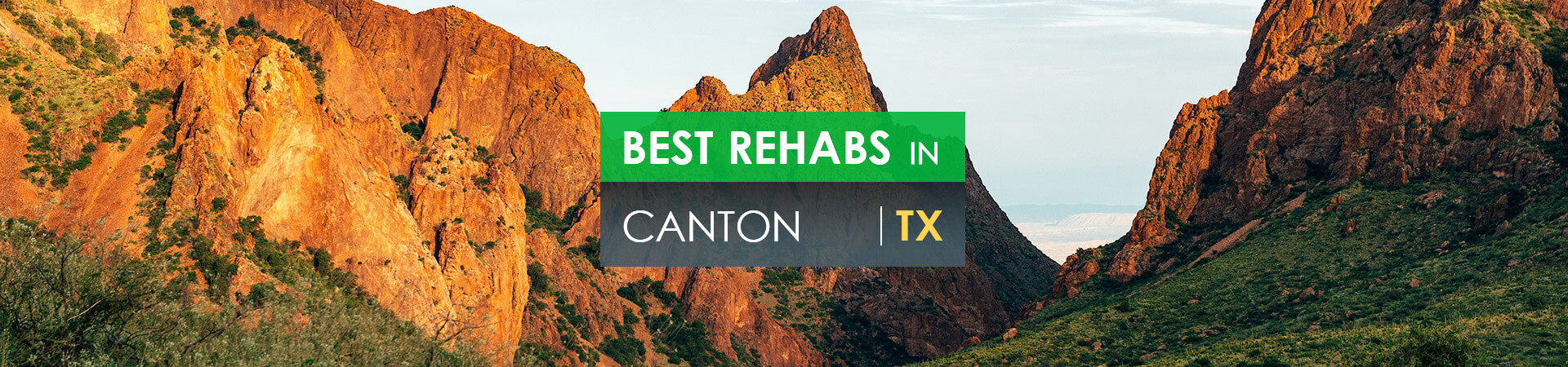 Best rehabs in Canton, TX