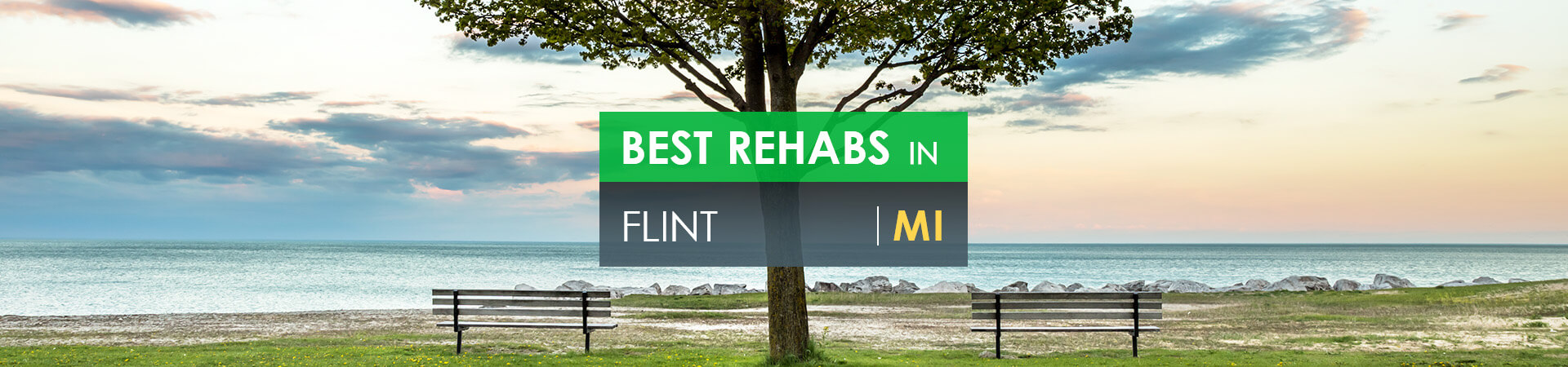 Best rehabs in Flint, MI