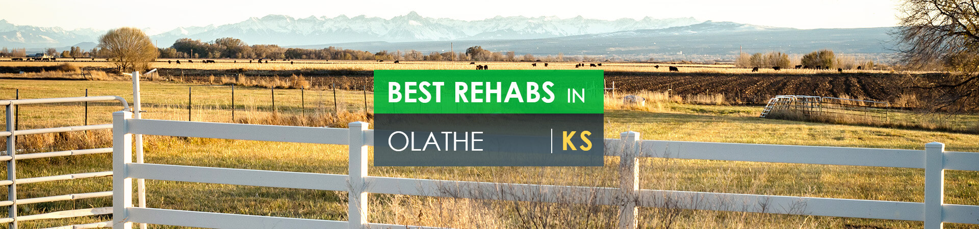 Best rehabs in Olathe, KS
