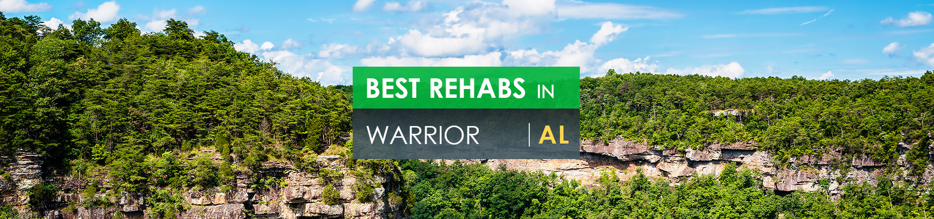 Best rehabs in Warrior, AL