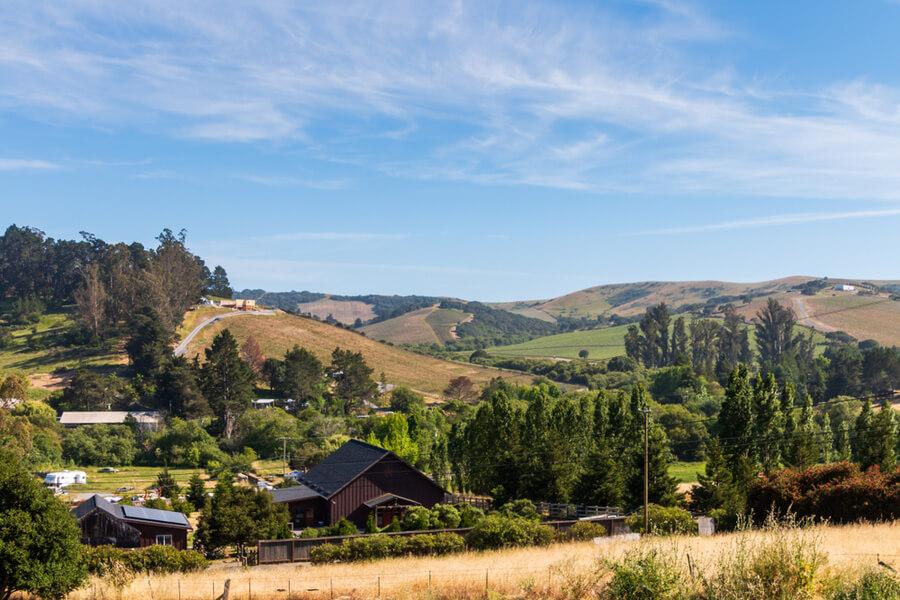 golden hillsides of California