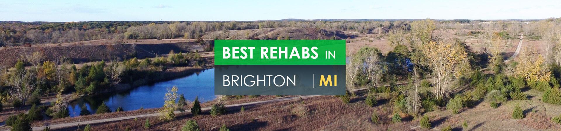 Best rehabs in Brighton, MI