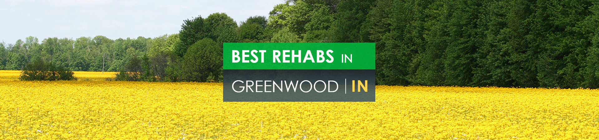 Best rehabs in Greenwood, IN