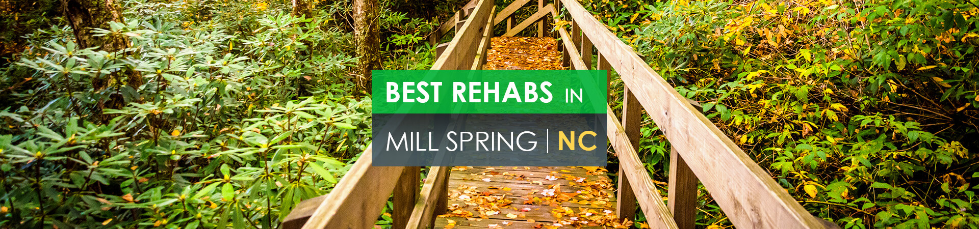 Best rehabs in Mill Spring, NC