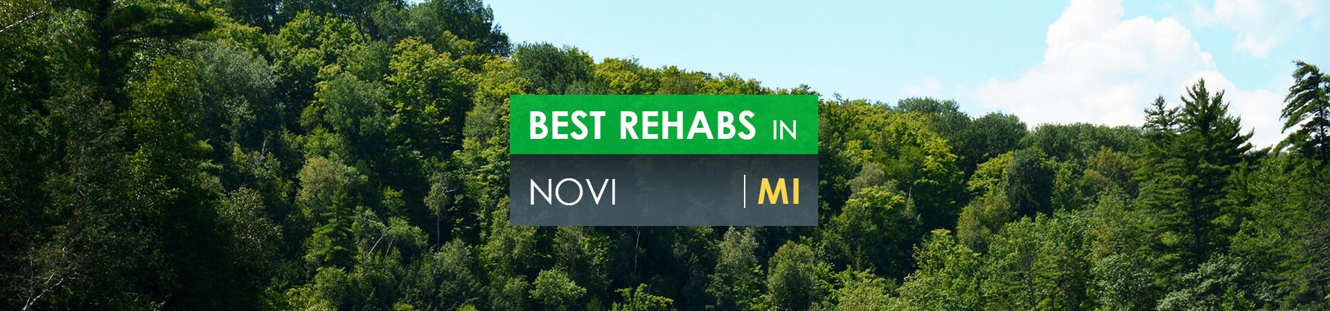 Best rehabs in Novi, MI