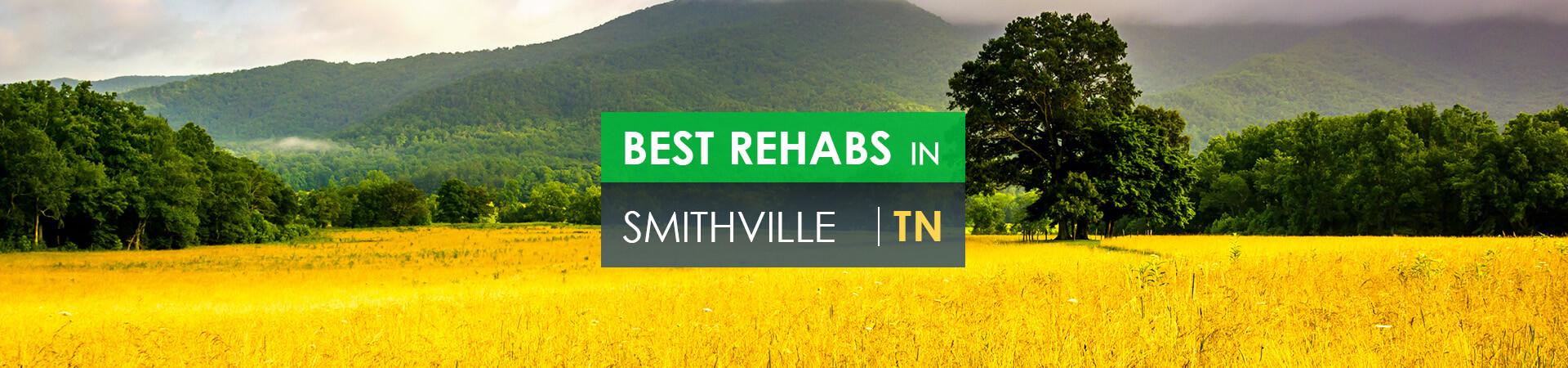 Best rehabs in Smithville, TN