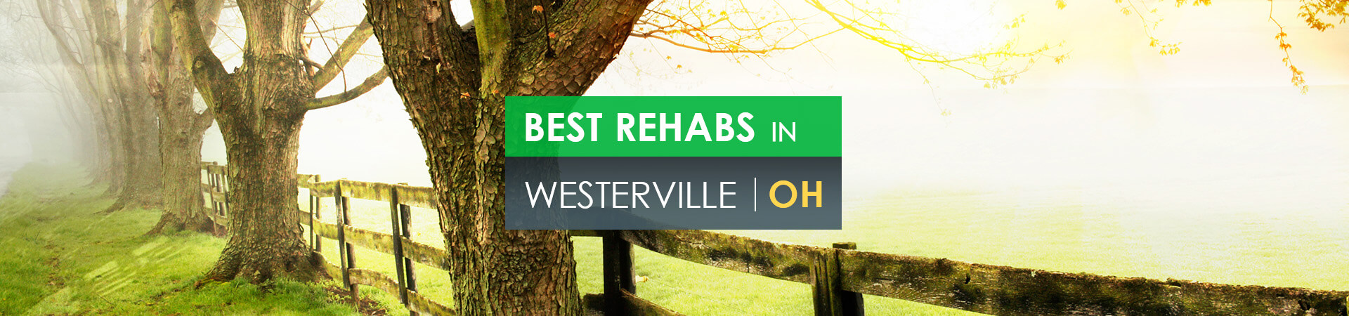 Best rehabs in Westerville, OH