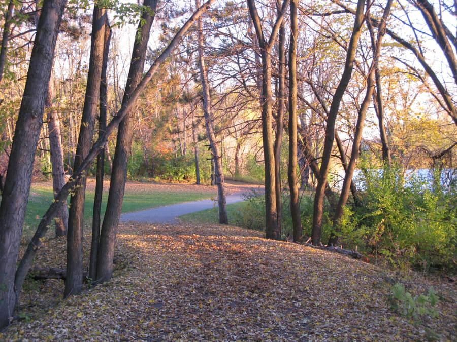 Fall in Woodbury, Minnesota