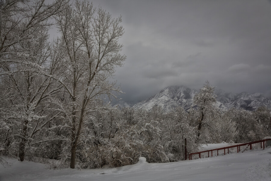 Willard Farm in Murray Utah USA
