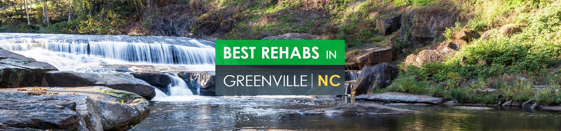 Best rehabs in Greenville, NC
