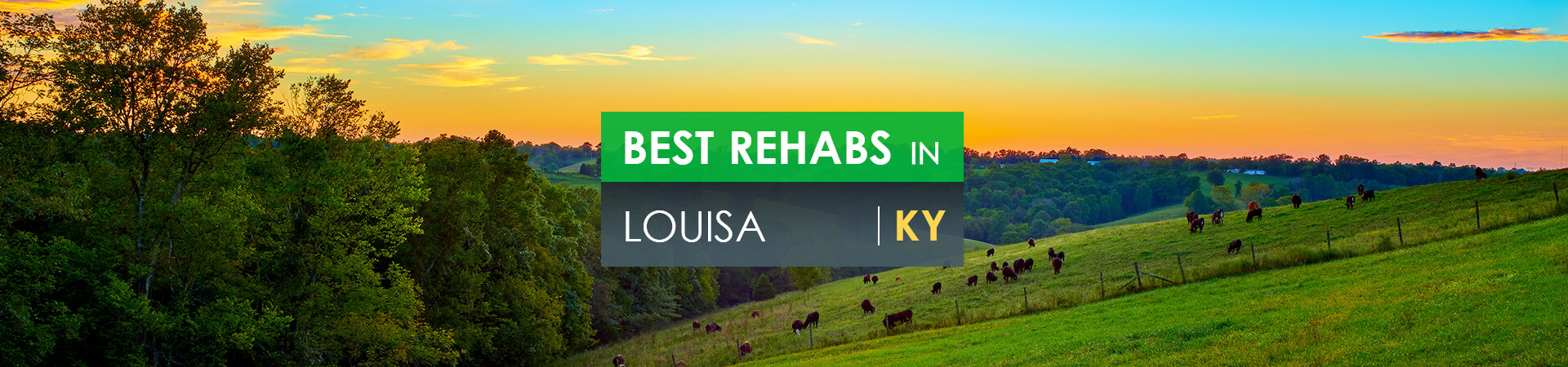 Best rehabs in Louisa, KY