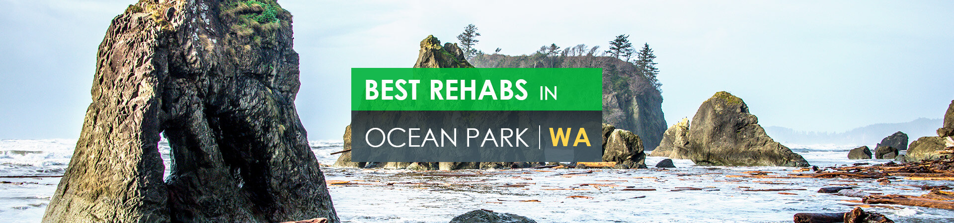 Best rehabs in Ocean Park, WA