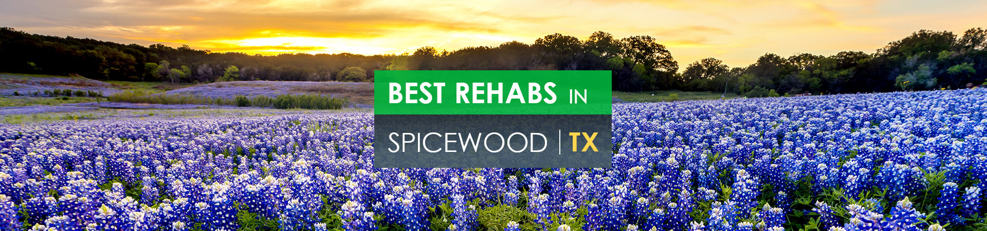 Best rehabs in Spicewood, TX