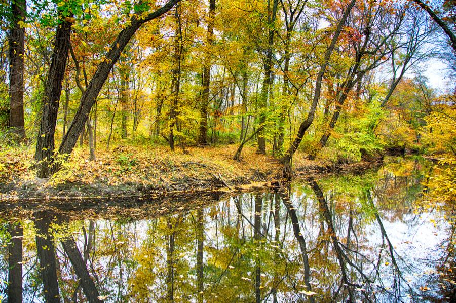 Kirby's Mill pond in Medford, NJ